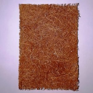picture of eco-vie-natural-and-vegan-coconut-vegetable-scrub-pad